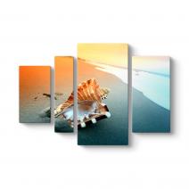 Deniz Kabuğu Tablosu