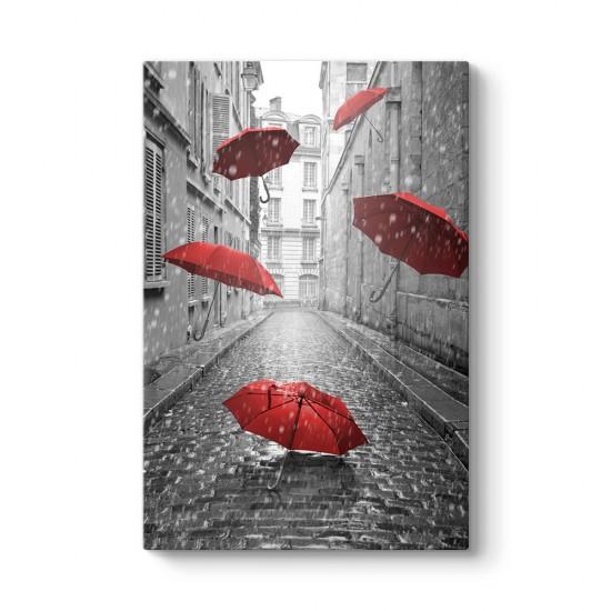 Kırmızı Siyah Şemsiye Tablosu