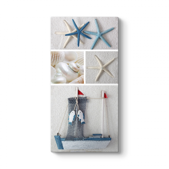 Deniz Yıldızı ve Kabuk Tablosu