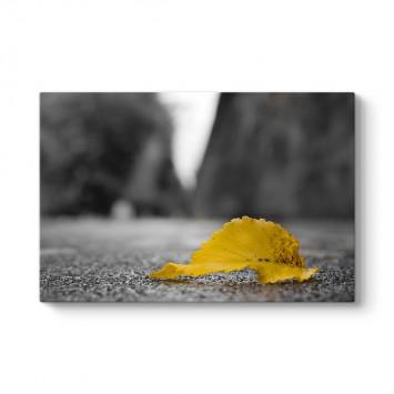 Sarı Yaprak Tablosu