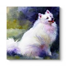 Sulu Boya Köpek Tablosu