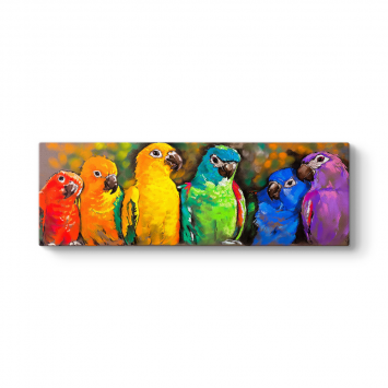 Renkli Papağanlar Panorama Tablo