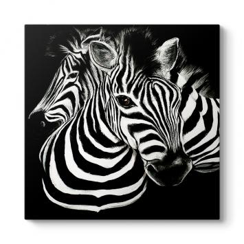 Siyah Beyaz Zebra Tablosu