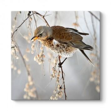 Serçe Kuşu Tablosu