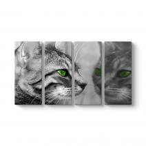 Yeşil Gözlü Kedi Tablosu