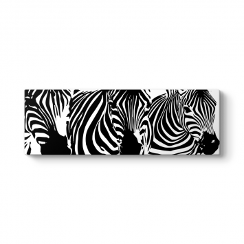 Zebra Desen Panorama Tablo