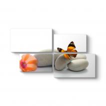 Natürel Kelebek Tablosu