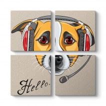 Dj Dog - Hello Tablosu