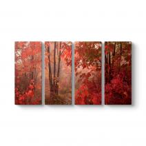 Kırmızı Çınar Yapraklı Tablosu