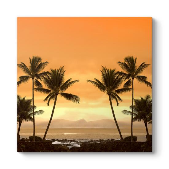 Palmiyeler Manzara Tablosu