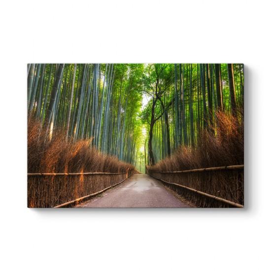 Japonya Bambu Tarlası Tablosu