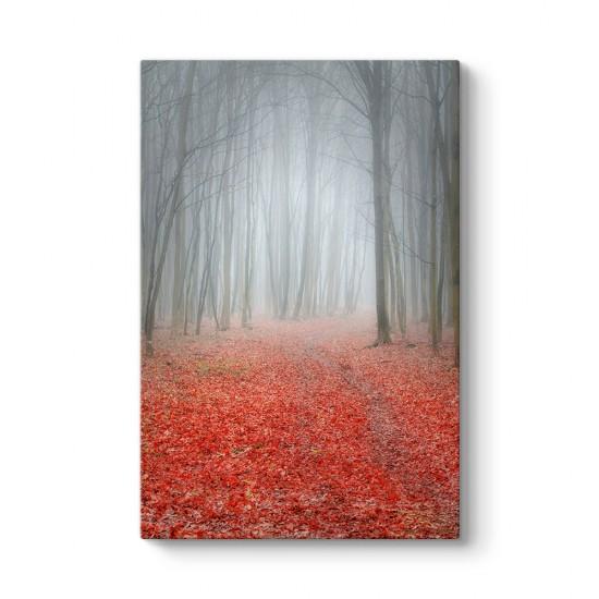 Kırmızı Sisli Orman Tablosu