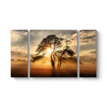 Ağaç ve Sis Tablosu