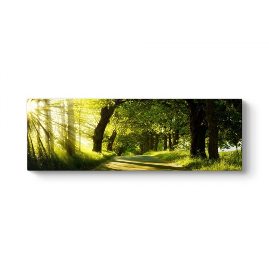 Yeşil Yol Panorama Tablosu