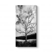 Siyah Beyaz Kuru Ağaç Tablosu