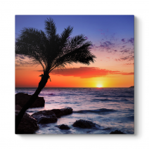 Palmiye Gün Batımı Tablosu