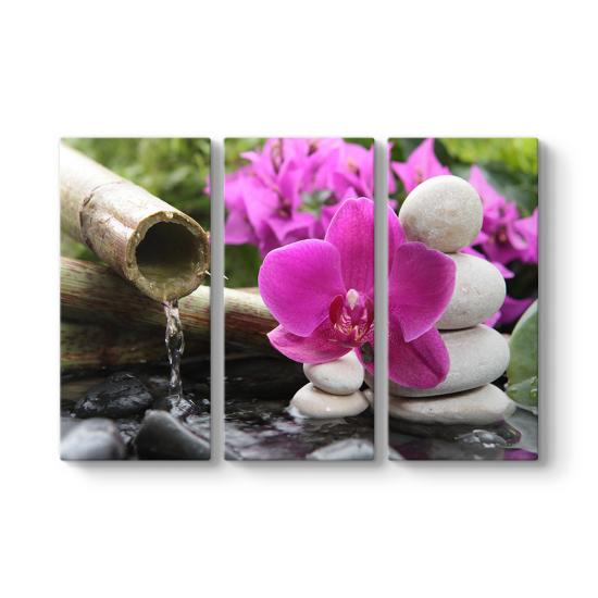 Bambu ve Orkide 3 Parçalı Tablo