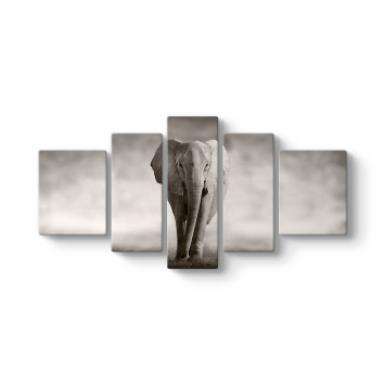 Elephant 5 Parçalı Tablo