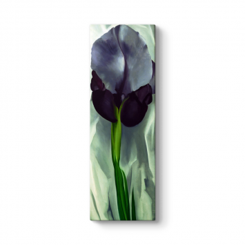 Georgia OKeeffe - Black Iris Tablosu