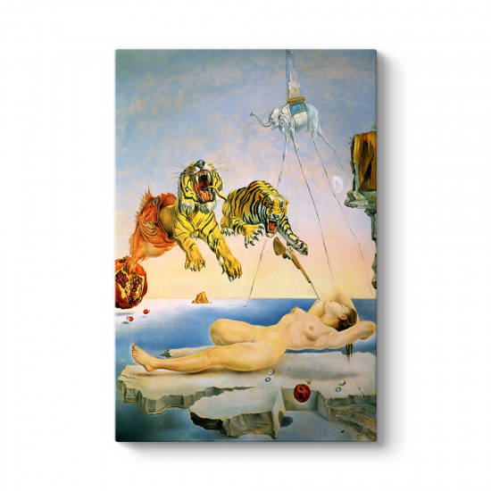 Salvador Dali - Dream Caused Tablosu