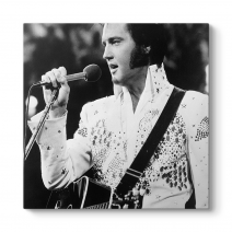 Elvis Presley - My Way Tablosu