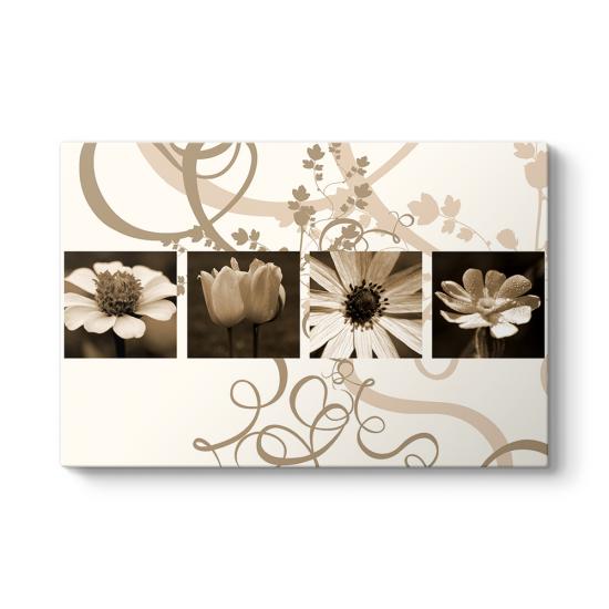 Brown Flowers Tablosu
