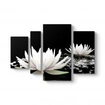 Nilüfer Çiçeği Vektörel Tablo