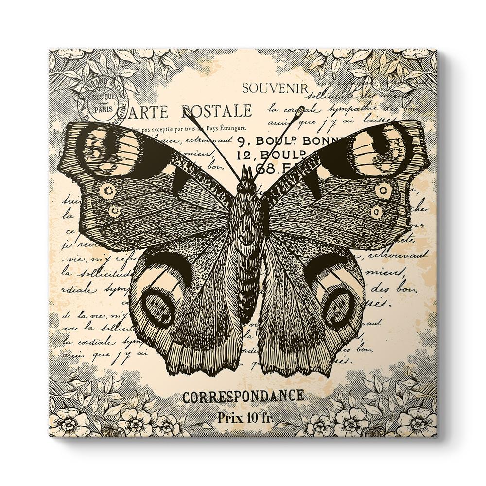 Kelebek Tabloları Kelebek Resimli Tablolar