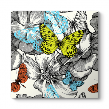 Renkli Kelebekler Çizim Tablosu