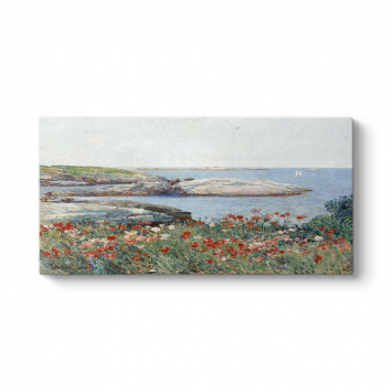 Childe Hassam - Poppies Isles of Shoals Tablosu
