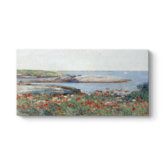 Childe Hassam - Poppies Isles of Shoals Tablosu