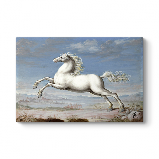 Joris Hoefnagel - White Horse Tablosu