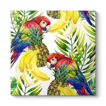 Tropikal Papağanlar Tablosu