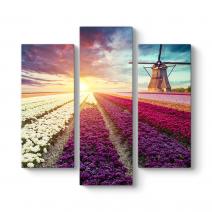 Hollanda Nederlands Çiçek Tarlası Tablosu
