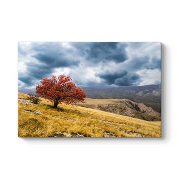 Yalnız Kırmızı Ağaç Tablosu