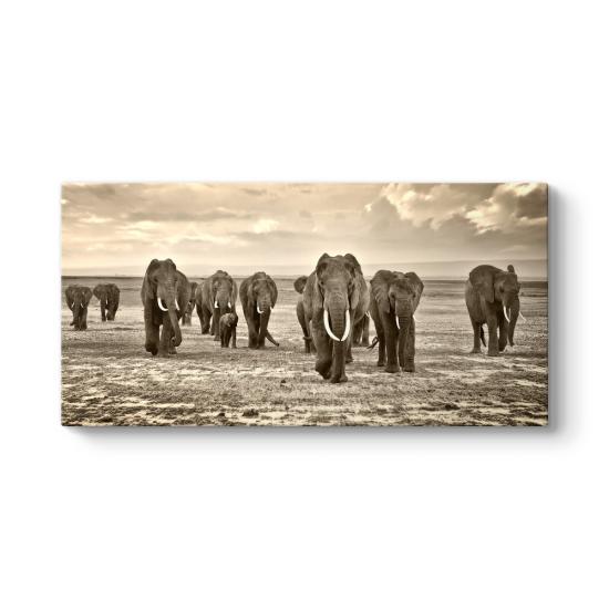 Afrika'da Fil Sürüsü Tablosu