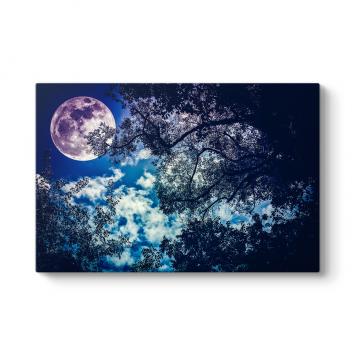 Ay ve Ağaç Silueti Tablosu