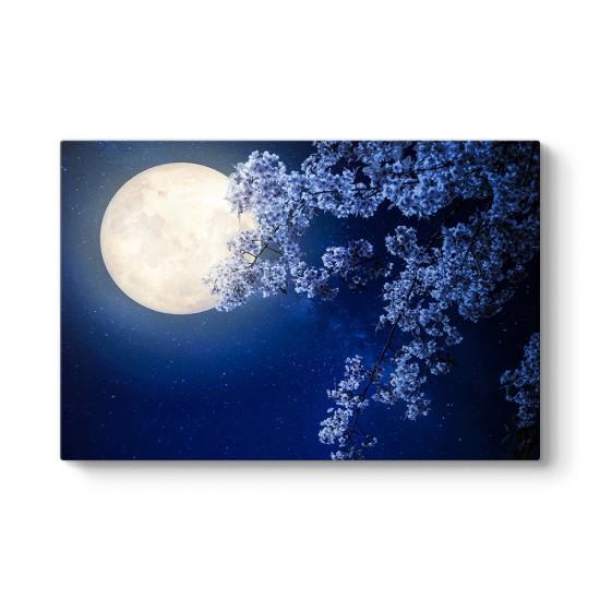 Ay ve Kiraz Çiçeği Tablosu