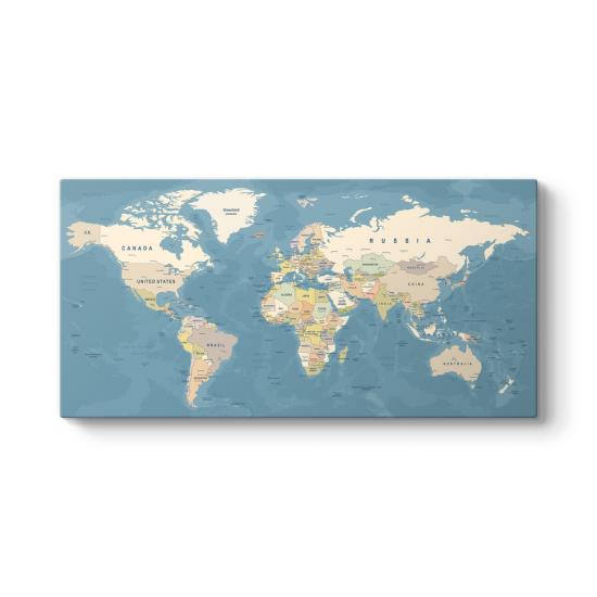 Dünya Haritası Panosu