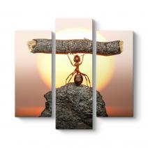 Karınca Çalışması ve Gücü Tablosu