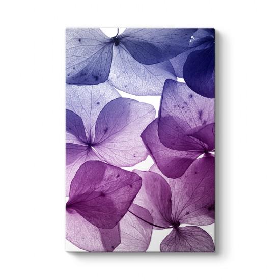 Mor Çiçek Yaprakları Tablosu