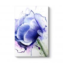 Anemone Çiçeği Tablosu