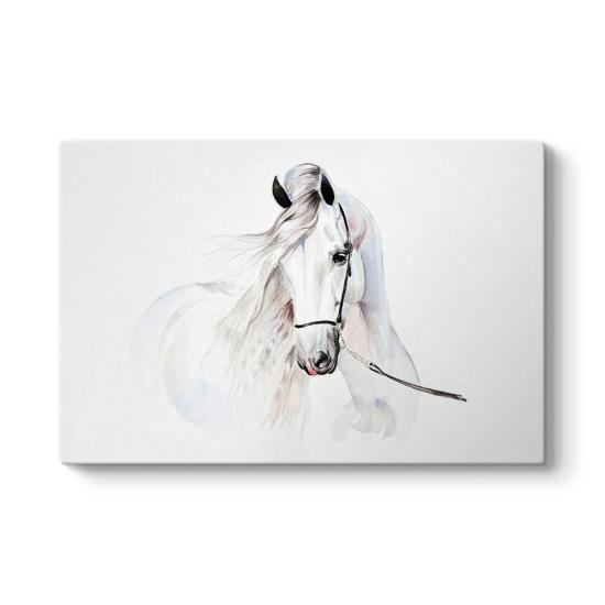 Çizim Beyaz At Tablosu
