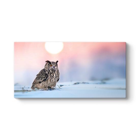 Kar Üzerinde Baykuş Tablosu
