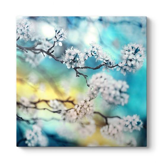 Kiraz Çiçeği Dalı Tablosu