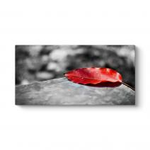 Kırmızı Yaprak Kanvas Tablo