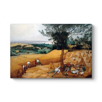 Pieter Brueghel - Hasat Zamanı