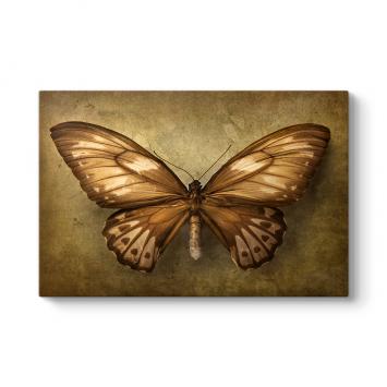 Vintage Kahverengi Kelebek