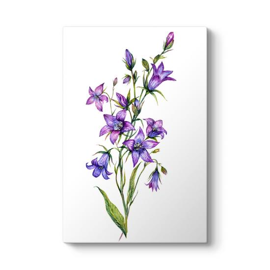 Bluebell Çiçeği Kanvas Tablo