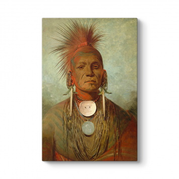 George Catlin - Medicine Man Kanvas Tablo